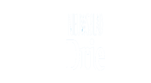 stedendriehoek-kop-VP-WEBSITE